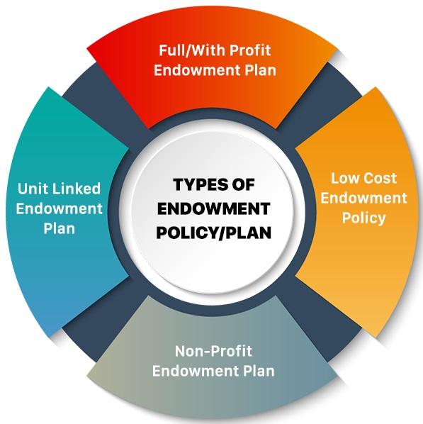 Types of Endowment Insurance Plan